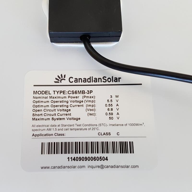 Canadian Solar Maple Back